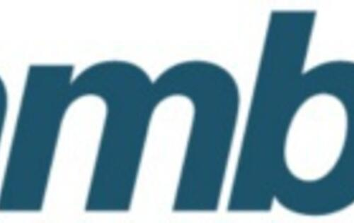 Rambus Claims Near Future Death of NAND