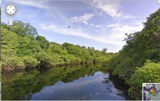 Visit the Amazon Basin on Google Street View!