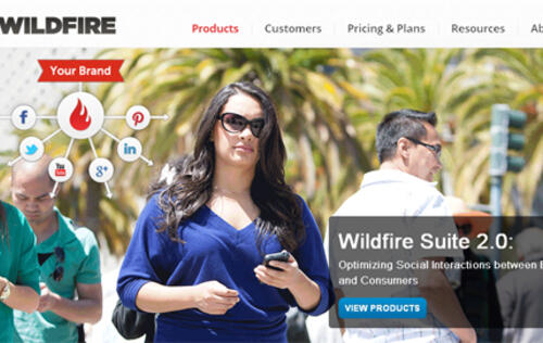 Google Acquires Wildfire Along with Zuckerberg's Sister