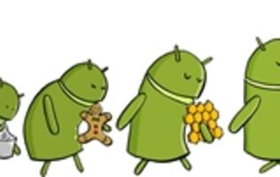 Next Android OS to be Named Key Lime Pie?