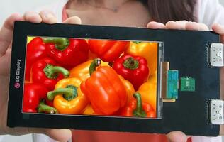 LG's 5.5-inch 2560 x 1440 Smartphone Display has 538 PPI