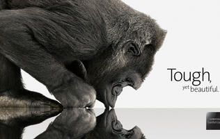 Samsung Acquires 7.4 Percent of Gorilla Glass Manufacturers Corning