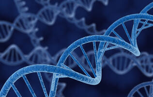 DNA-based Storage Unleashes Tremendous Data Density
