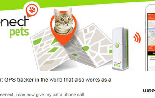 Weenect Cats is the first phone for cats
