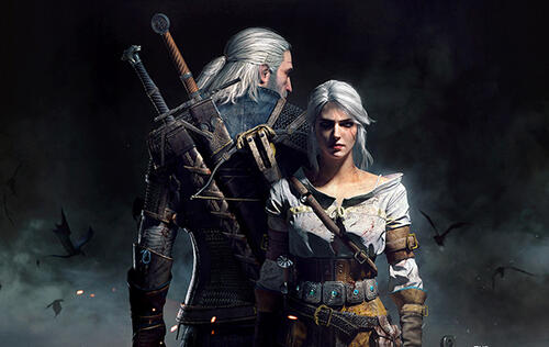 Someone's making a movie of The Witcher for 2017