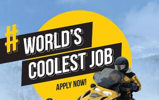 "The ""World's Coolest Job"" by Honestbee is now accepting applicants"