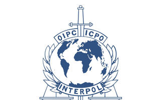 Interpol arrests mastermind of Nigerian online scams worth US$60 million