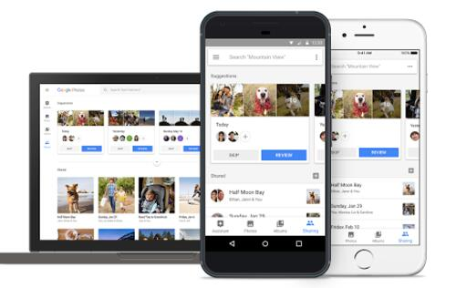 Updated Google Photos will automagically curate best photos and assist in sharing!