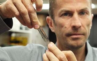 IBM scientists fit 330TB of uncompressed data into magnetic tape