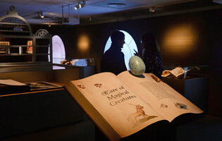 Visit the British Library's sold out Harry Potter: A History of Magic exhibit with Google's Arts & Culture app