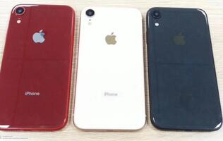 The 6.1-inch LCD iPhone could launch in these three colors