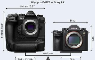 See how the rumoured OM-D E-M1X compares against your favorite camera here
