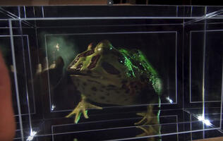 Looking Glass Factory has created an actual holographic display