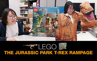 Wanzi builds the Lego Jurassic Park: T.rex Rampage set in a day!