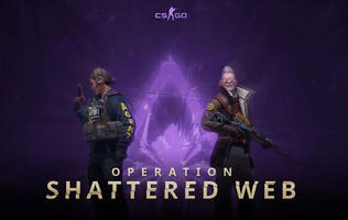 CS:GO's Operation Shattered Web adds character skins to the game