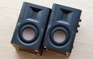 Hivi Swanspeakers D100 speakers review: Entry-level price, high-end sound